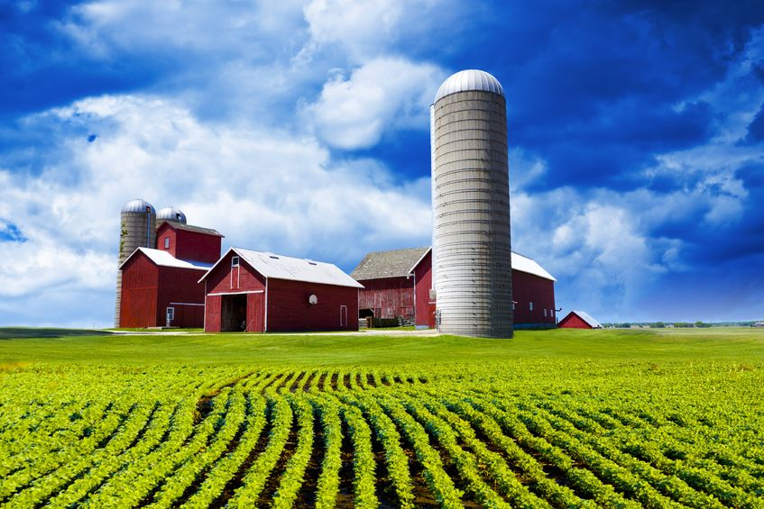 13827296 - american farm